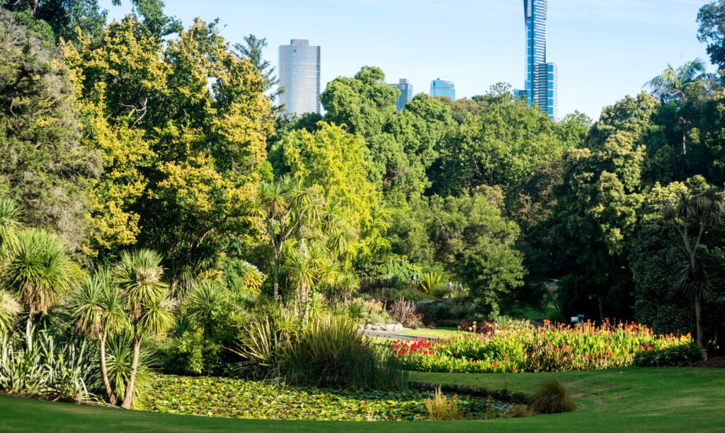 Ο κορωνοϊός με έκανε να είμαι τόσο ευγνώμων για τα πάρκα της πόλης. Πρέπει να αγωνιστούμε για αυτά.