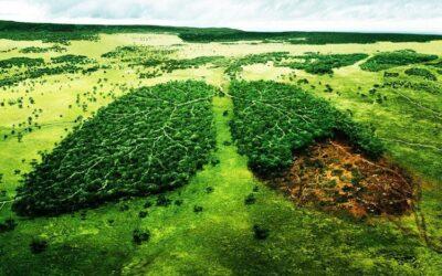 Διαμαρτυρίες σε πολλές πόλεις για το αντι-περιβαλλοντικό νομοσχέδιο